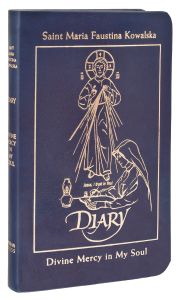 Deluxe Leather Blue Diary