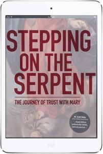Stepping On The Serpent (eBook version)