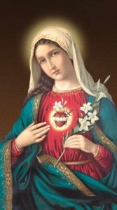 """Immaculate Heart of Mary 10"""" x 18"""" Canvas Print"""