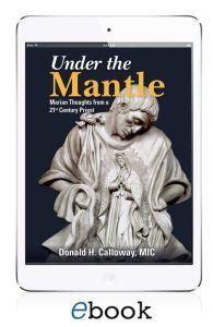 Under the Mantle eBook